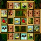 Bird Cards Match