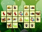 Play Connect The Insects