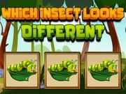 Play Which Insect Looks Differ…